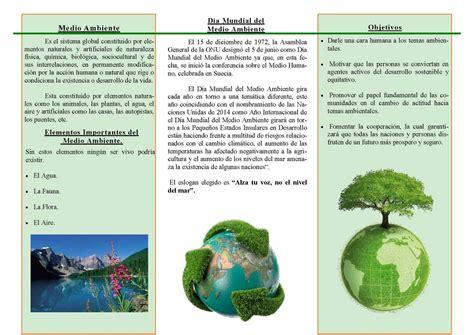 tripticos de ecologia y medio ambiente triptico dia del ambiente calameo downloader