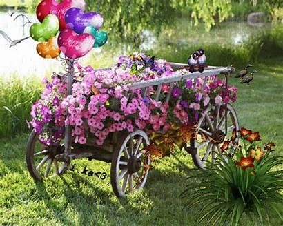 Garden Flower Gardens Birthday Happy Flowers Picmix
