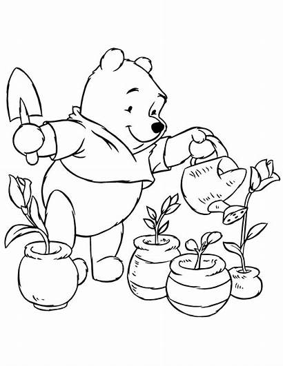 Coloring Plants Pages Watering Plant Pooh Bear