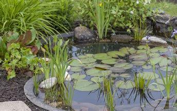 Wie Lege Ich Einen Teich An by Tipps Und Tricks Rund Um Das Thema Haus Garten