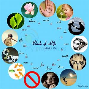 Circle Of Life   A Cyclic Poem U2026 You Will Love It    Please Read  U2013 Propel Steps