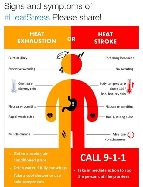 How High Can Internal Temperature Of The Human Body. Visible Signs. Corrosive Signs. Status Signs. Support Signs Of Stroke. Kos Signs Of Stroke. Shower Signs. Hypertension Signs. Procedure Infographic Signs