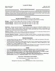 is there a resume template in microsoft word 2010 sales leader resume sle resumes design