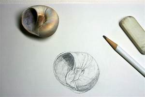 pencil drawings | Rosemary's Blog