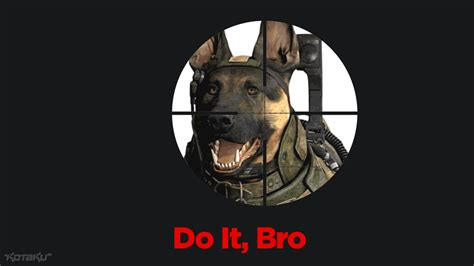 Call Of Duty Dog Meme - image 551806 call of duty dog know your meme