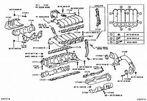 Manifold For 1999