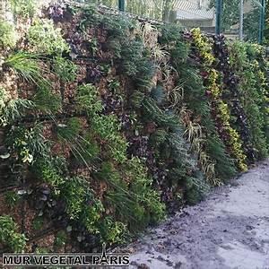 Mur Végétal Extérieur : cr ation de mur v g tal ext rieur mur v g tal ~ Premium-room.com Idées de Décoration