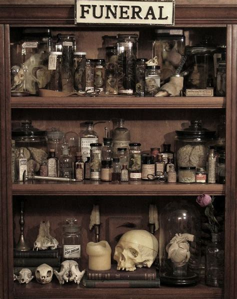 the shop of curiosities artistic ceramics in san gimignano 244 best witch s kitchen images on pinterest halloween decorations halloween ideas and