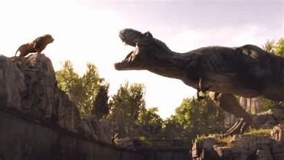 Scene Jurassic Fallen Kingdom Read Staying Might