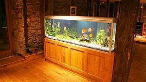 How to Maintain a Big Fish Tank Aquarium Care - YouTube