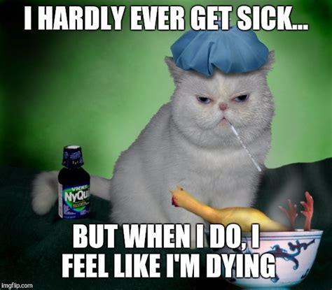 Sick Cat Meme - sick cat imgflip
