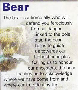 Bear spiritual guide | Mystical Magic