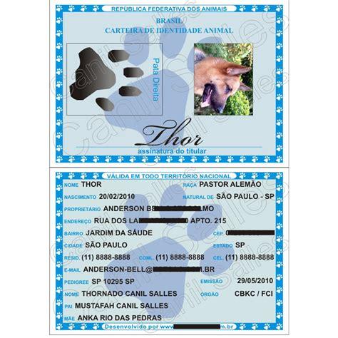 Rg Animal Pet Carteira Identidade Cães Gatos Aves Placas