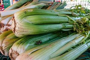 Types Of Celery