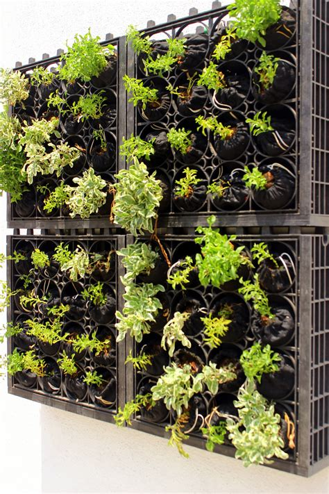 Of Vertical Gardens by Vertical Gardens Spaces