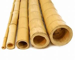 """3"""" x 10' Bamboo Poles Natural (5 Poles)"""
