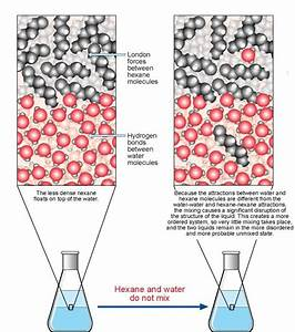 How Do Covalent Bonds Dissolve In Water    Example
