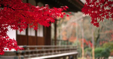 japan wallpapers  images japanese temple scenery