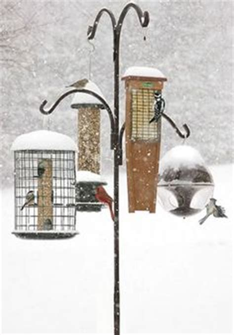 heavy duty bird feeder pole woodworking projects plans