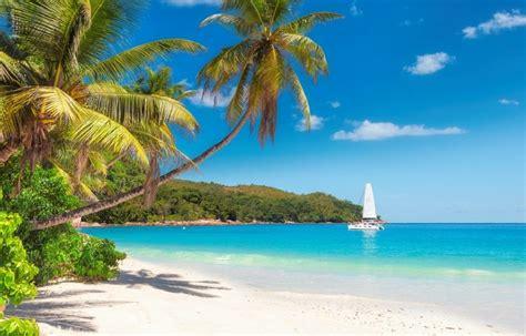 Urlaub auf Jamaika: Reise ins grüne Paradies der Karibik