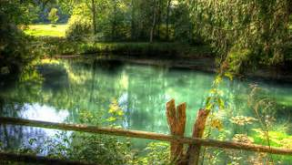 nature-wallpapers-hd-w...