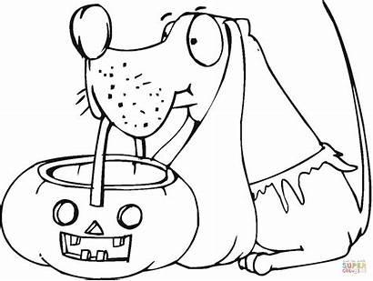 Halloween Coloring Pages Dog Pumpkin Basket Jack