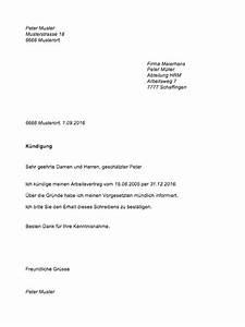 Kündigungsfrist 3 Monate Zum Monatsende Berechnen : k ndigungsschreiben muster muster ~ Themetempest.com Abrechnung