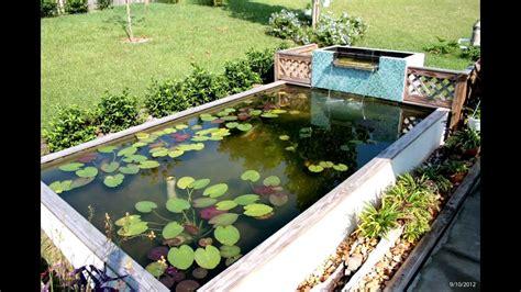 uv light for koi pond koi pond build uv clarifier and filtration youtube