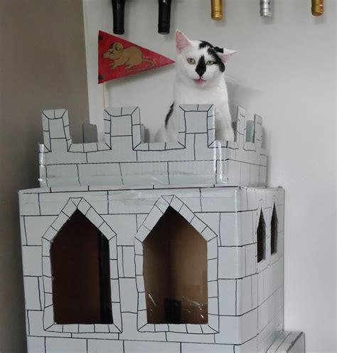 dont  build cardboard castle   cats