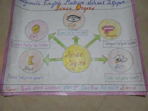 science chart parth wadikar tuljapur class  st