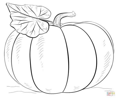 pumpkin super coloring school subject pumpkins