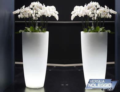 Vasi Per Arredamento Interno Vasi Per Arredamento Interno