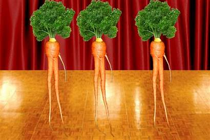 Dancing Carrots Dance Vegetables Giphy Gifs Funny