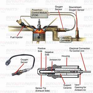 How To Buy An Oxygen Sensor - What Is An O2 Sensor