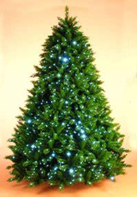 irish christmas trees website