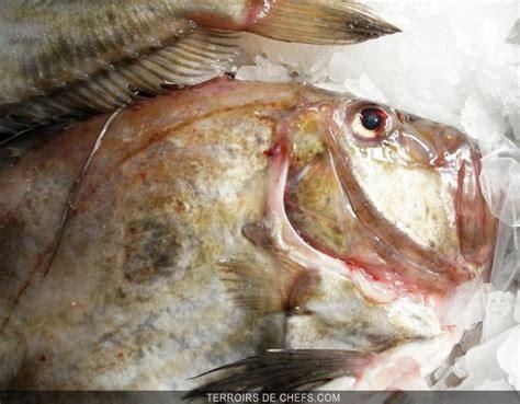 cuisines et vins le poisson de légende