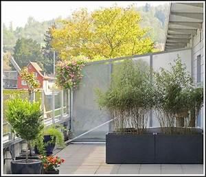 Bambus Balkon Sichtschutz : balkon sichtschutz bambus anbringen balkon house und dekor galerie p6aok5rarn ~ Eleganceandgraceweddings.com Haus und Dekorationen