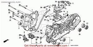 Honda Sk50m Dio 1993  P  Canada Crankcase  Oil Pump