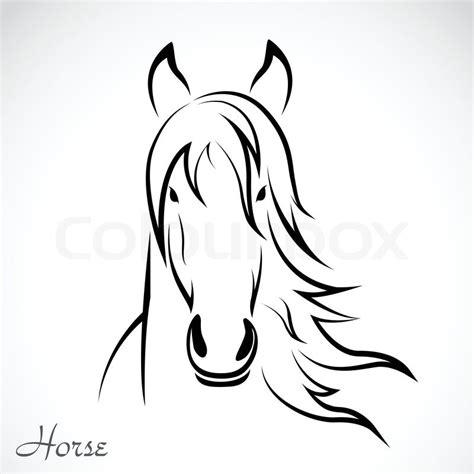 vector image   horse  white background stock