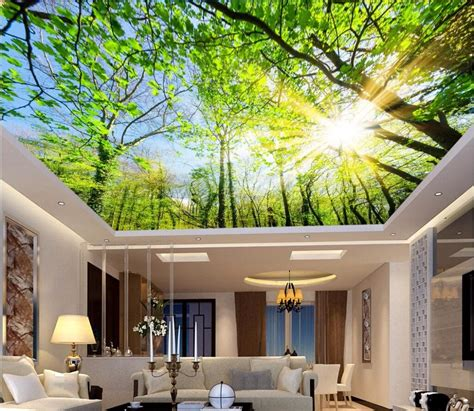 custom photo  ceiling murals wall paper contracted