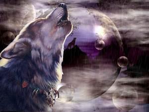 Волки нанесли ущерб в 9,3 млн рублей Республике Тува ...