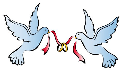 wedding doves png clipart best