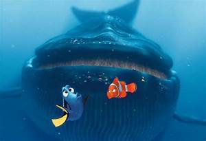 Whales don't eat clown fish they eat krill. *krill swim by ...