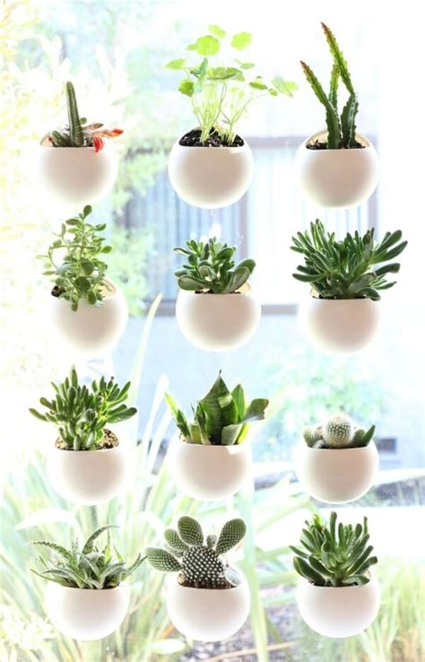 Small Window Plants by Small Space House Plant Display Ideas 183 Cozy House