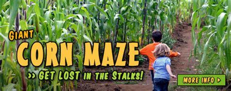 Corn Maze Pumpkin Patch Raleigh Nc naylor family farm amp corn maze raleigh nc mazes