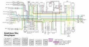 150cc Atv Wiring Diagram Circuit