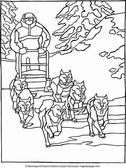 Coloring Pages Savage Template