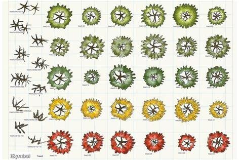 pin  plant symbols