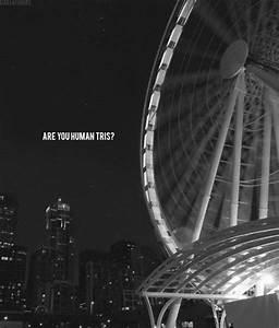 Quote Book: Divergent