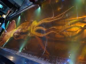 Giant Colossal Squid